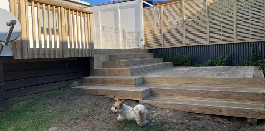 Decking timber NZ – Our top 5 alternates to Pine